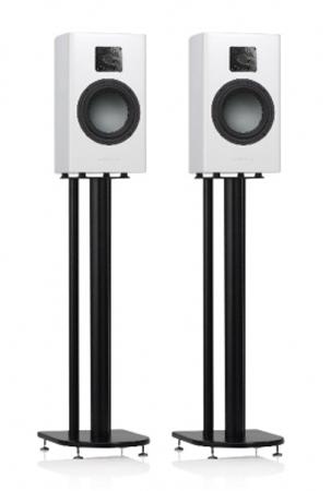 Gauder Akustik Arcona 40 MK2